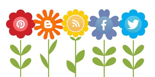 Local Social Media Marketing Solutions